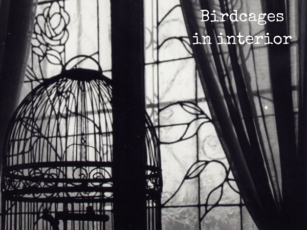 How to use birdcages in home decor
